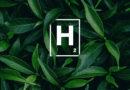 Informe especial: Dos meses a puro Hidrógeno
